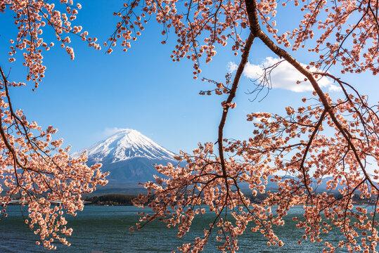 Mt. Fuji, Japan on Lake Kawaguchi