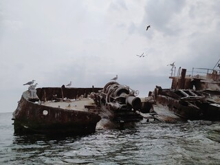 Seagulls Flying Over Ship Wreck On Sea Against Sky