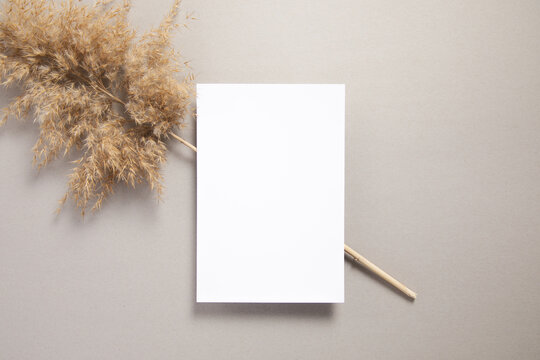 business card mockup with a dried lagurus decoration