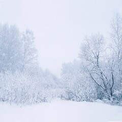 Snow Covered Landscape Against Sky
