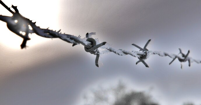 Low Angle View Of Frozen Barbed Wire Against Sky During Winter