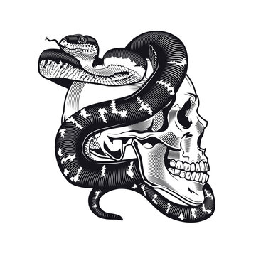 Skull with python tattoo design. Monochrome element with dead skeleton head and snake vector illustration. Wild animal gothic concept for symbols and labels templates