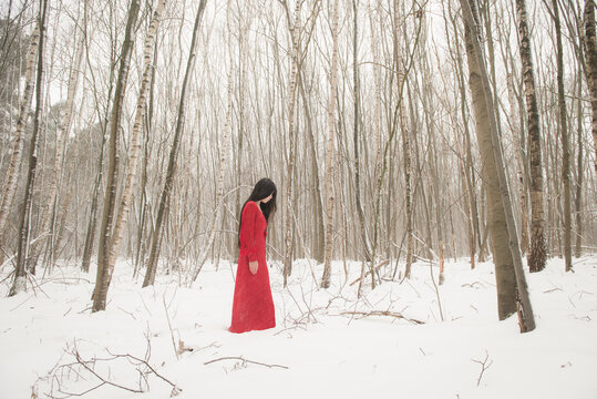 Girl in long red dress standing in the snow in a winter forest