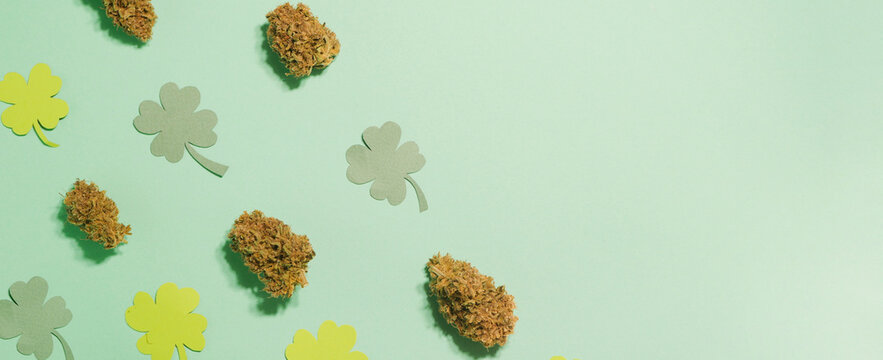 Saint Patrick's Day pattern. Cannabis buds with four leaf clover pattern. Copy space.