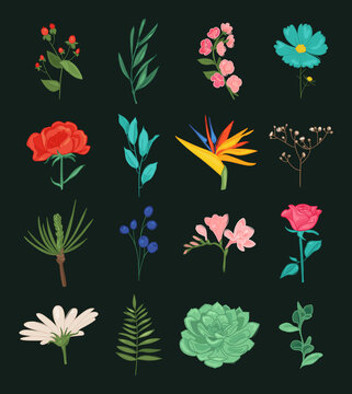 Floral plants isolated doodle icons. vector illustration. Beautiful spring and summer flower collection
