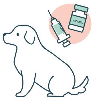 予防接種 動物病院 犬 座る