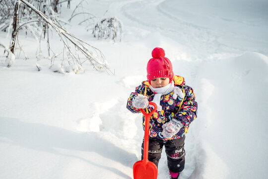 Little girl shoveling snow on home drive way. Beautiful snowy garden or front yard. Child with shovel playing outdoors in winter season. Family removing snow after blizzard. Kids play outside.