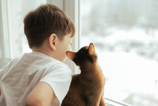 Two friends kid and a cat looking throug the window lifestyle image