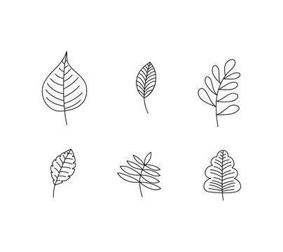 Set of Spring Leaf Outline Vector line Icons. Doodle Spring Concept Minimal Style Illustration for kids book design or web. Element of tree logo