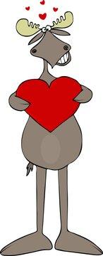 Lovestruck bull moose