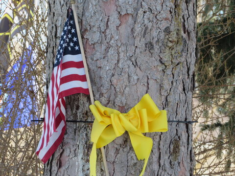 Us flag and yellow ribbon around tree trunk