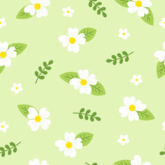 Wall Mural - Cute white floral seamless pattern on pastel green background. Daisy flower pattern