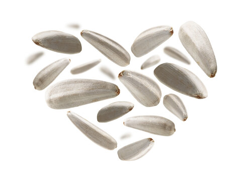 White sunflower seeds in the shape of a heart on a white background