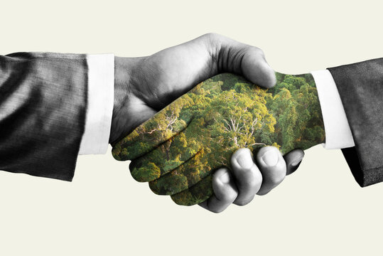 Green deal concept, handshake. Double exposure, hands with forest.