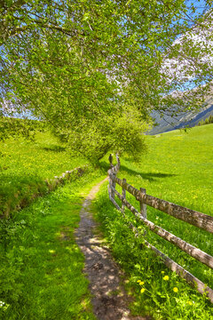 South Tyrol impressions with hiking trail in the Ratschings Valley, Italy.
