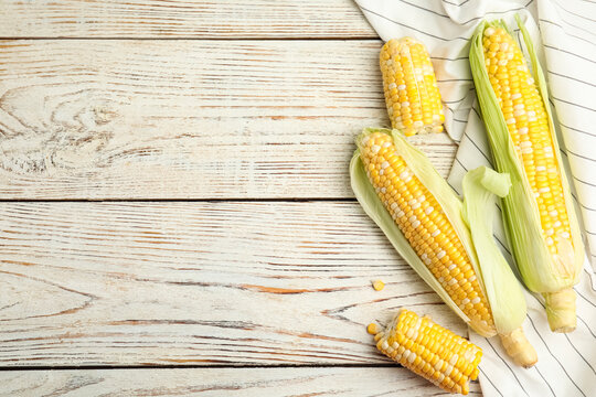 Tasty sweet corn cobs on white wooden table, flat lay. Space for text