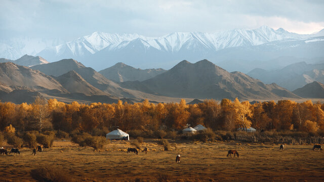autumn in the Mongolian mountains
