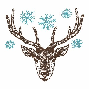Drawing of a deer head and snowflakes by hand