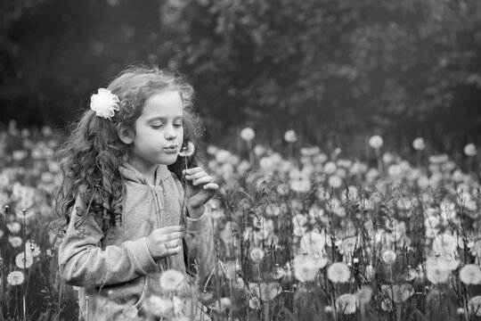 Black-white portrait, little girl blows a dandelion in the spring park.