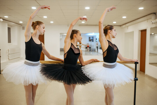 Elegant ballerinas, performing at barre in class