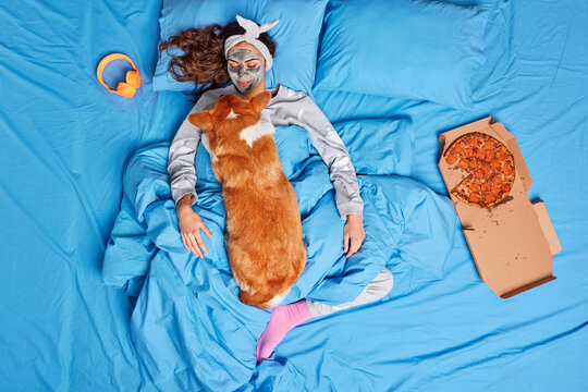 View from above of satisfied European woman undergoes beauty procedures stays in bed with dog has lazy Sunday dressed in pajama surrounded with pizza and headphones. Home relaxation concept.