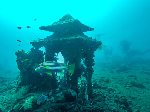 Temple, fond marin à Bali, Indonésie