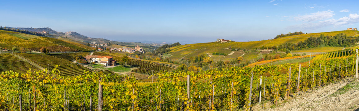 Wide panoramic view of Langhe vineyards near Barolo, UNESCO World Heritage Site, Piedmont region, Italy