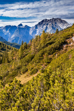 View from the Hagen mountains towards Watzmann in Berchtesgadener Land, Bavaria, Germany, in autumn.