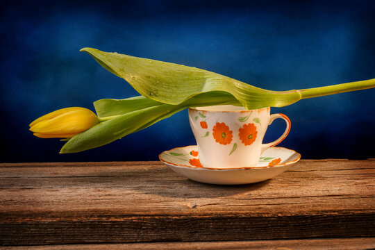 Still life of a closed yellow tulip placed on an orange and white ornate pottery cup on a barn wood table in front of a blue backdrop