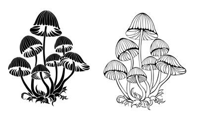 Obraz Silhouette hallucinogenic mushrooms - fototapety do salonu