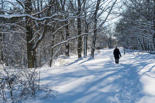 Snowy footpath with a walking woman