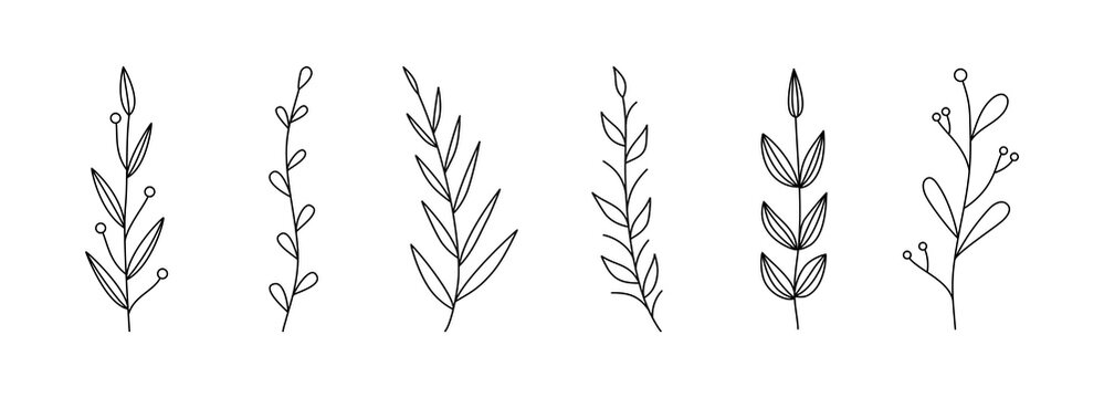 Botanical linear leaf set. Abstract minimalist leaves collection, creative herbal art. Vector illustration