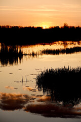Fotobehang - Sunset on a quiet secluded lake in the forest. beautiful view of the sky and red clouds reflected in the water.
