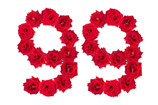Numeral 99 made of red roses on a white isolated background. Element for decoration. ninety nine. Red roses.