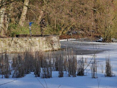 Teich im winterlichen Stadtpark Hamburg