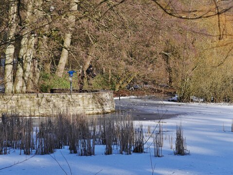Mauer am Teich im Stadtpark Hamburg