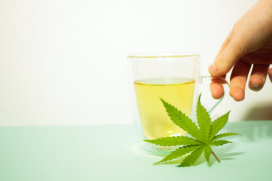 Cannabis tea in transparent cup. Medical marijuana leaf. Homeopathic herb. Stress relief therapy