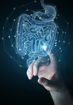 Man hand using digital x-ray of human intestine holographic scan projection 3D rendering