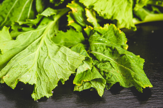 turnip greens leaves on reflective black
