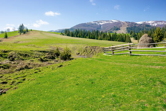 mountainous rural landscape in spring. haystack on a grassy field behind the wooden fence on rolling hills. snow capped ridge in the distance. beautiful countryside scenery on a bright sunny day