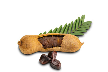 Fototapete - Tamarind with leaves and seeds isolated on white background with clipping path.