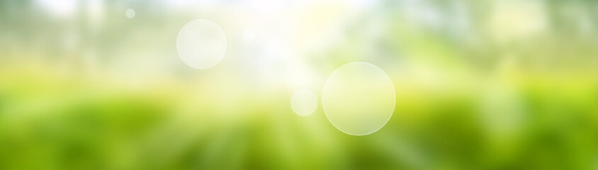 Blurred bright green spring background. Abstract landscape with shining bokeh. Space for design and...