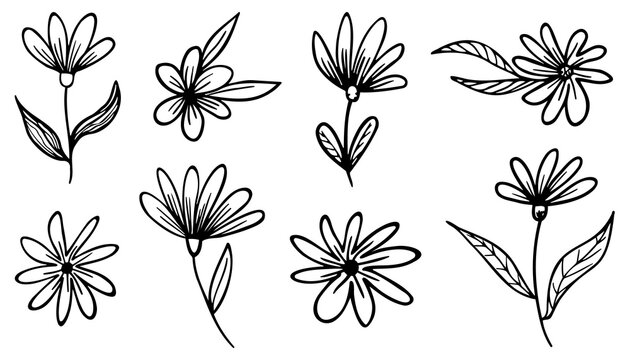 Collection of different hand drawn flowers with leaves without background. Editable vector graphic.