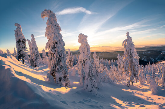Early morning in the mountains on a cold winter day. Sun rises above the distant horizon. Trees bend down under lots of snow.