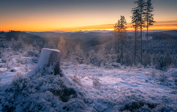 Soft winter dawn in the mountains. Little bit of haze and beautiful colors on the horizon. Early morning in Beskid Mountains, part of Carpathian range, Czech Republic.