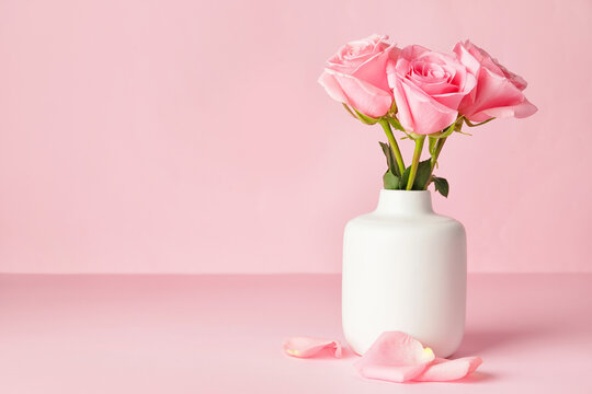 Beautiful pink roses in vase on color background