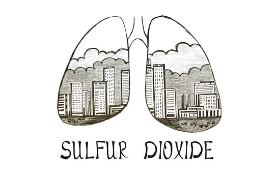 Bad Ecology concept meaning SULFUR DIOXIDE with sign on the piece of paper.
