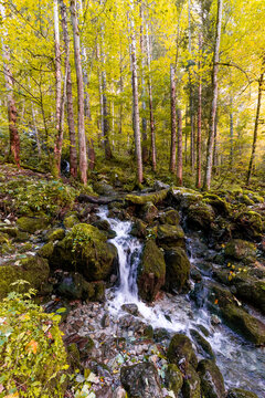 The Roethbach, a small creek near the Obersee Berchtesgadener Land, Bavaria, Germany.