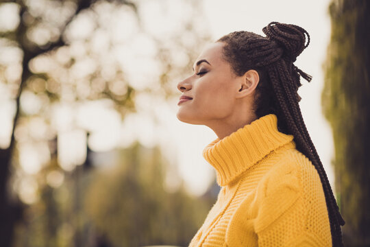 Profile side photo of young happy positive smiling afro woman enjoying free time wear yellow sweater outside outdoors