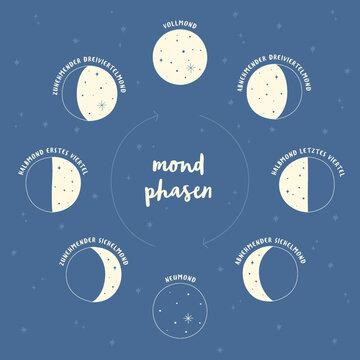 Illustration der Mondphasen mit deutscher Erklärung Mondzyklus Vollmond Neumond als Vektorgrafik